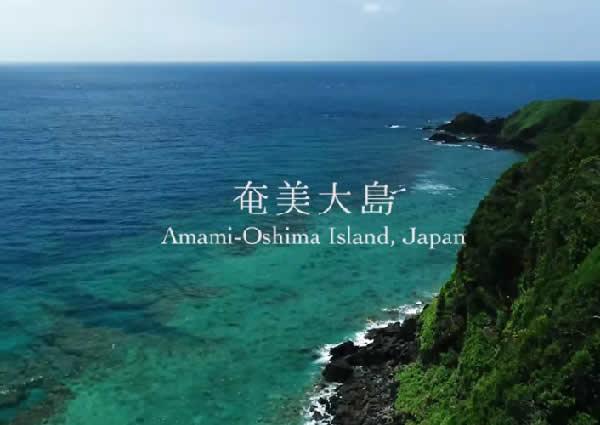 奄美大島youtube